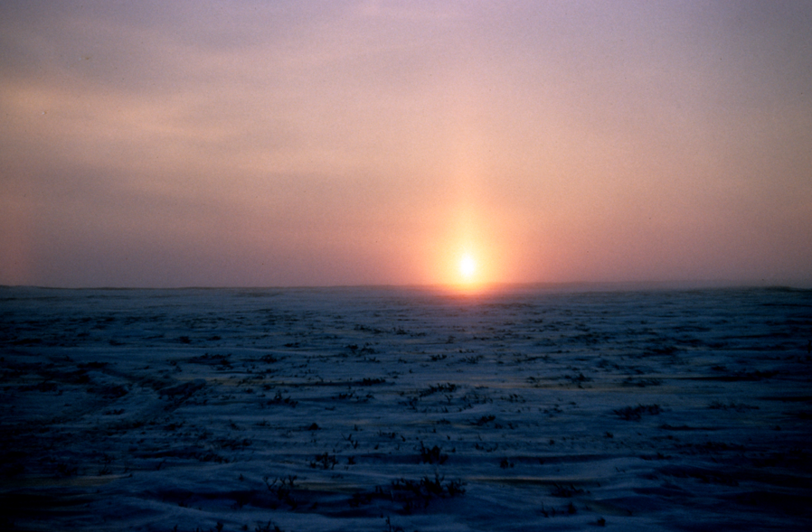 Alaska, Oliktok Point, North Slope at Sunrise, Winter 1951Photographer: Rear Admiral Harley D. Nygren, NOAA Corps (r