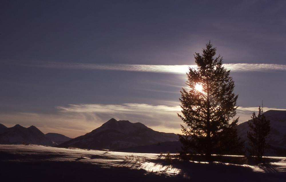 Gallitan Range, 1977, Northwestern section of Yellowstone National Park, Photo by J. Schmidt.